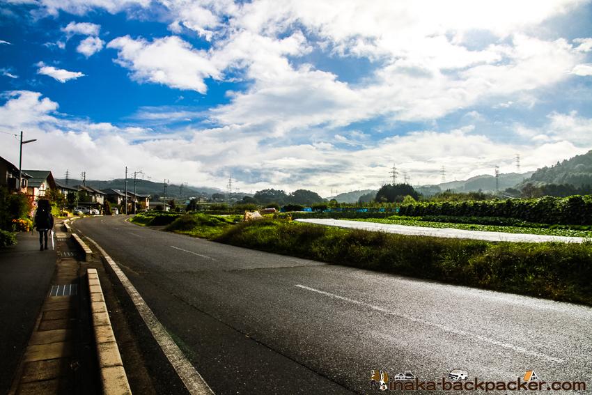 長野県 みどり湖 周辺