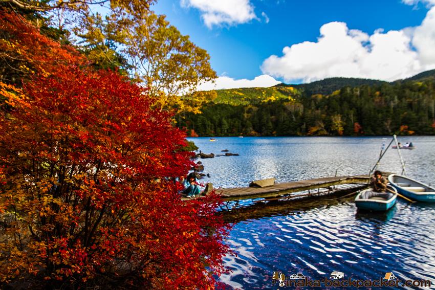 長野県 白駒の池 紅葉