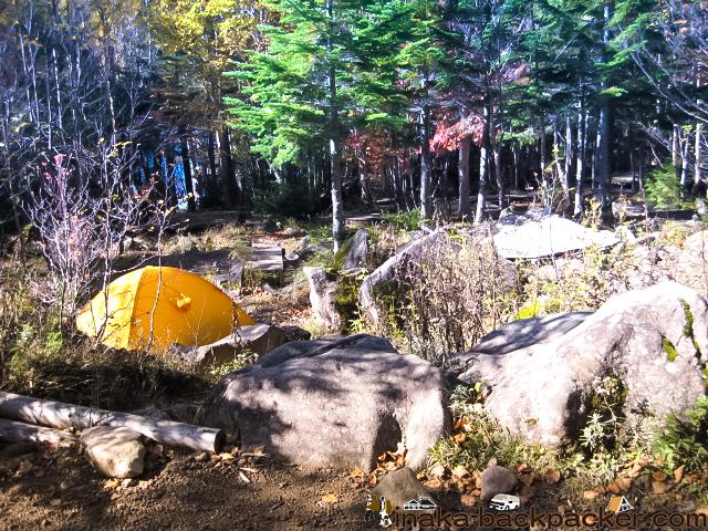 白駒池 テント泊 キャンプ