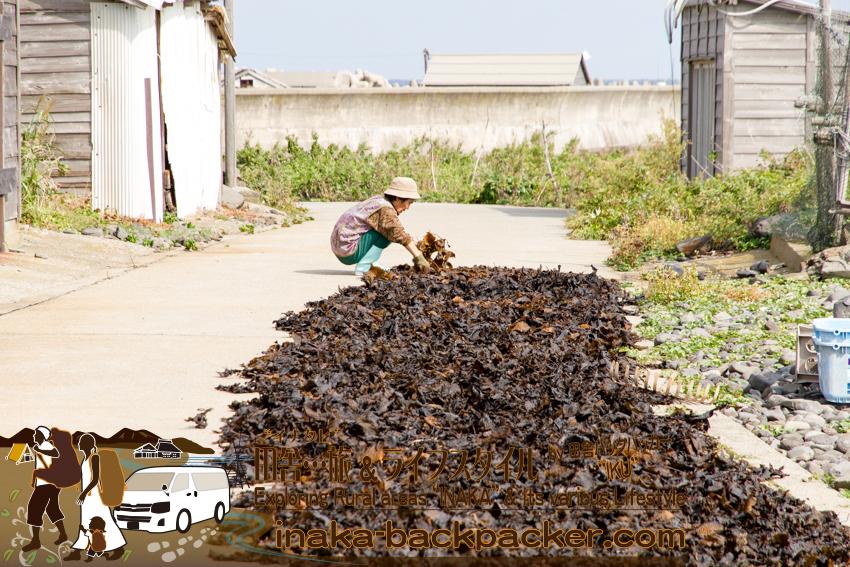 舳倉島で昆布を干すおばさん。Drying seaweed on a street on Hegura Jima island.
