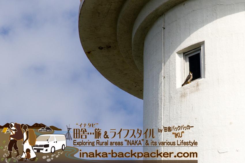Tabi_01_Nagano_Noto_1049