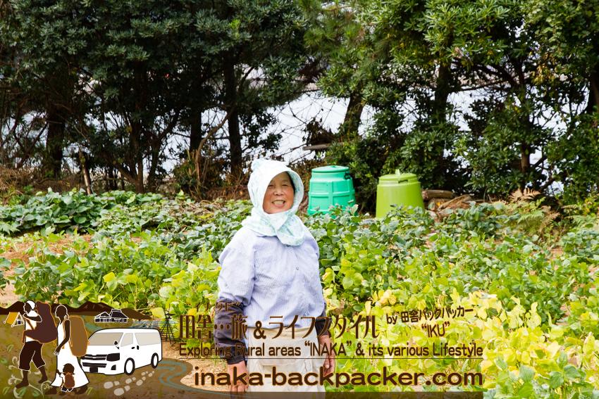 石川県 奥能登一周中 - 大豆をつくるお母さん