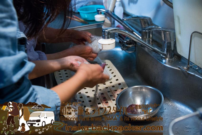 奥能登一周中 - 新田信明さん宅で料理中。アオリイカを料理中。(石川県穴水町)