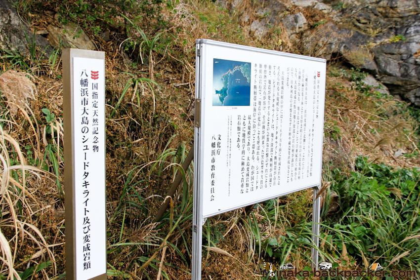 シュードタキライト 国指定天然記念物