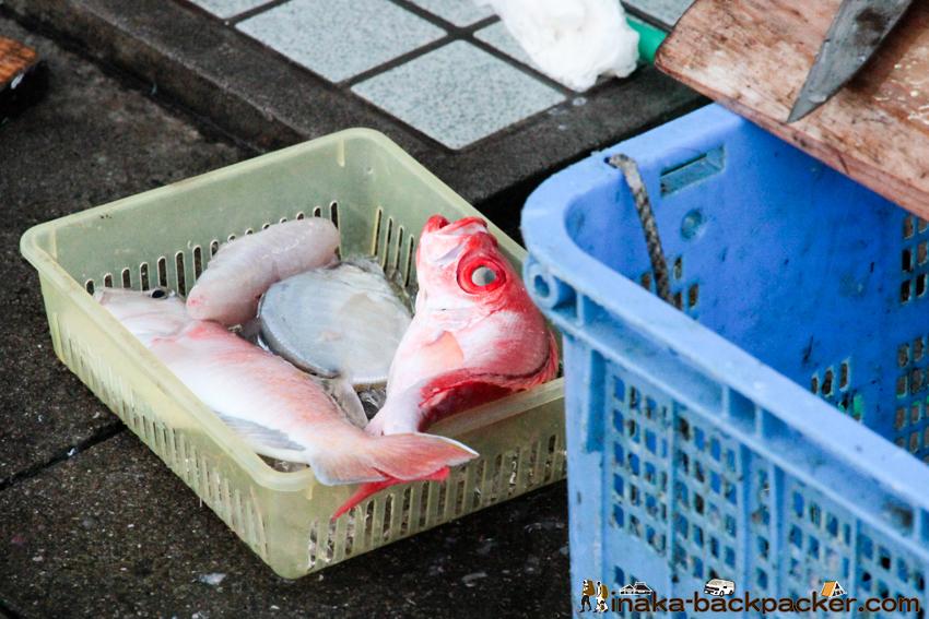 愛媛県 大島 釣り 穴場