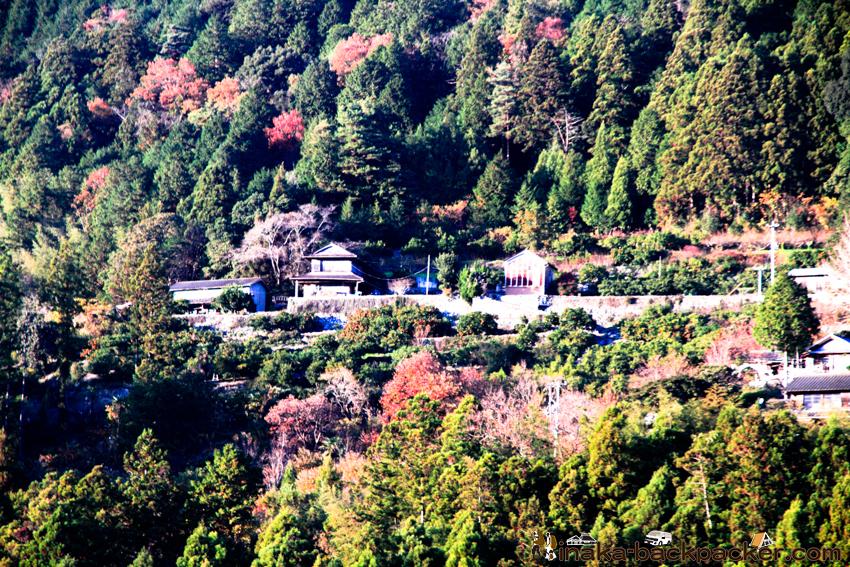 焼山寺 神山方面 道 山 綺麗