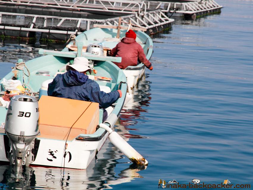 日振島 養殖 釣り