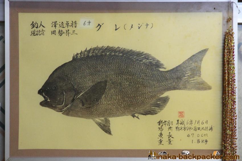 Okinoshima island in Kochi Japan 高知県 沖の島 磯釣り グレ メジナ