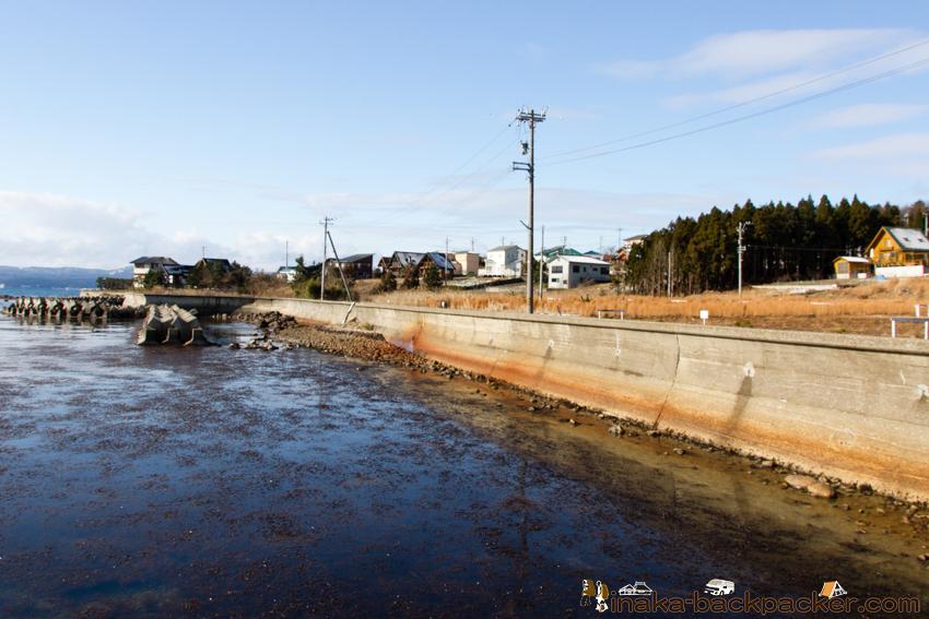 穴水湾 椿崎 海藻が沢山