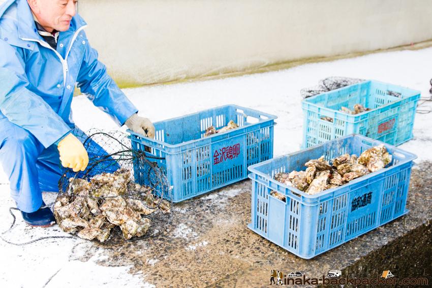 河端勝男 牡蠣 養殖