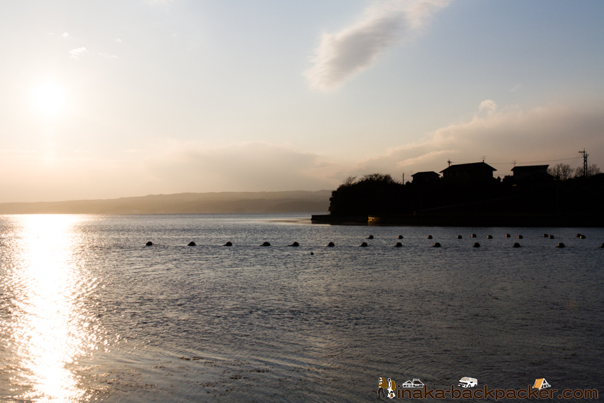 穴水湾 牡蠣 養殖