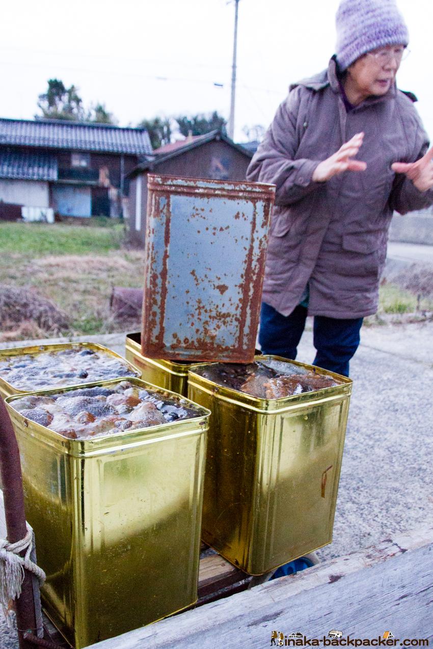 海鼠 漁師