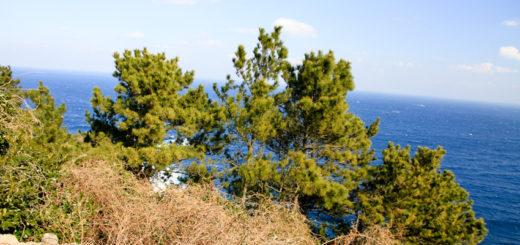 福岡県 小呂島