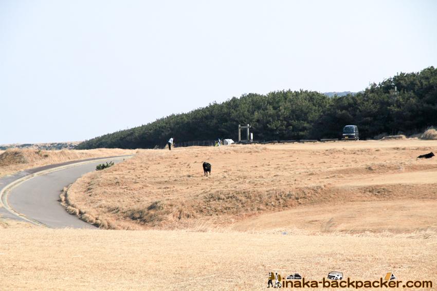ukujima island in Nagasaki 長崎県 五島列島 宇久島 平家盛 歴史 ゴルフ