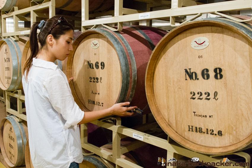 能登ワイン 工場見学