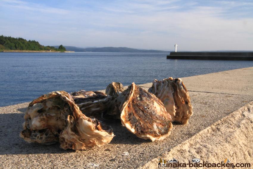 穴水町 岩車 岩牡蠣