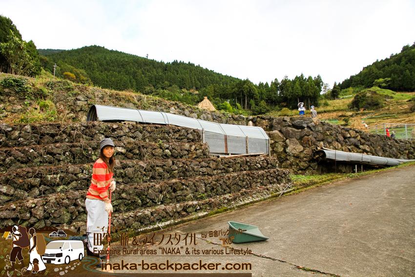 上勝町 樫原の棚田 竹中 掃除 tokushima kamikatsu kashihara rice terrace irodori
