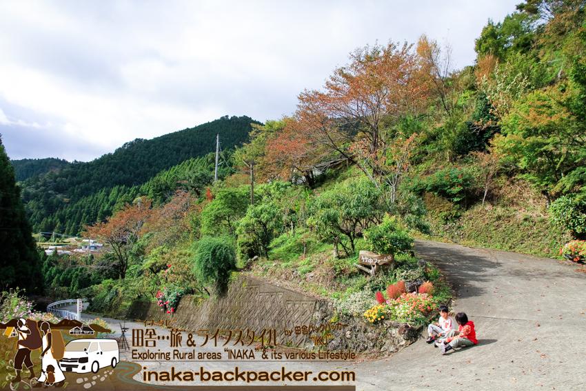 徳島県 上勝町 樫原の棚田 棚田米 竹中ファーム 人生いろどり ロケ地 tokushima kamikatsu rice terrace kashihara great view countryside japan