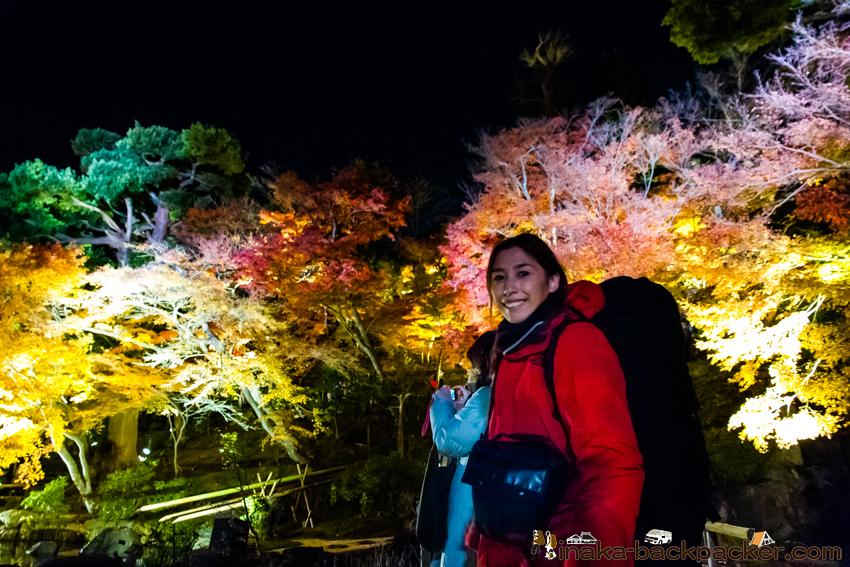 鎌倉 紅葉 おすすめ ライトアップ