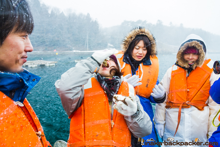 anamizu raw oyster experience 穴水町 牡蠣 水揚げ 生牡蠣 田舎体験