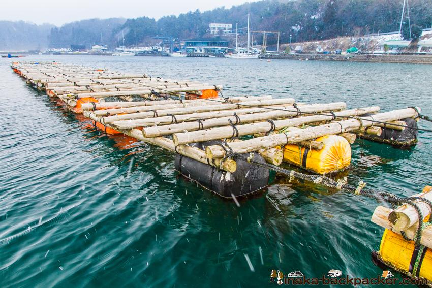 石川県 能登半島 穴水町 牡蠣棚