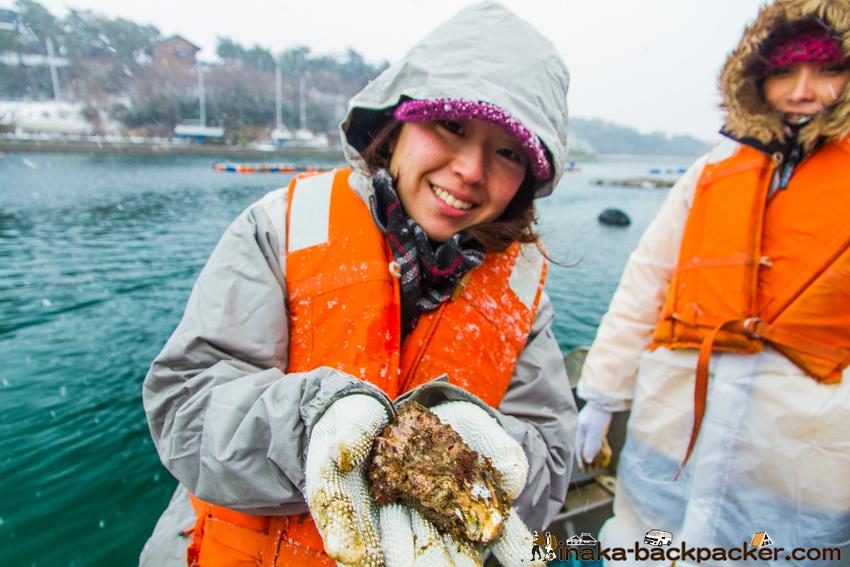 石川県 能登半島 穴水町 牡蠣漁師 体験