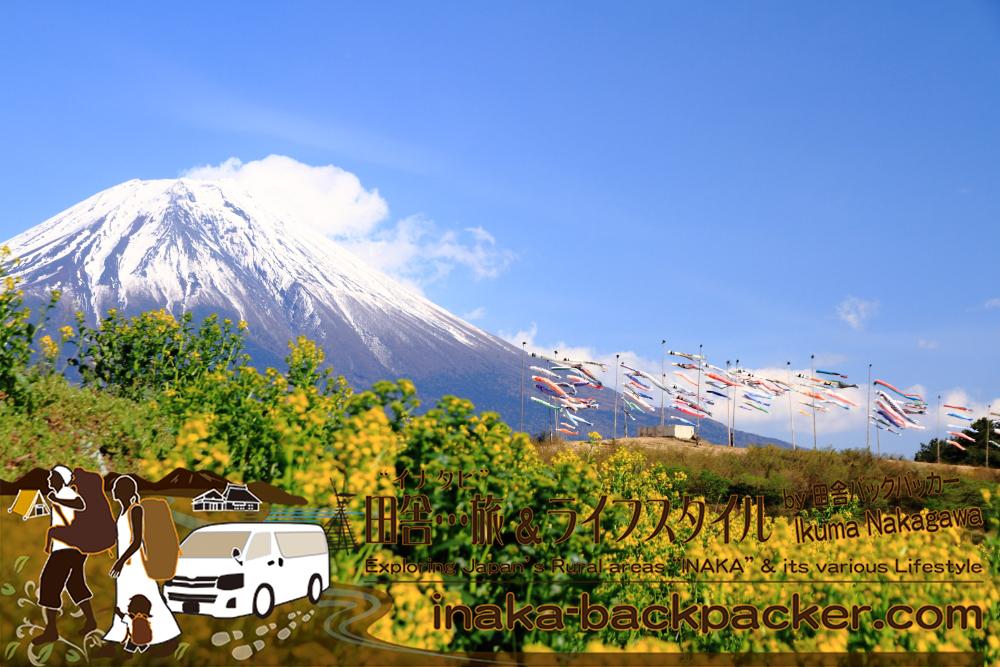 田貫湖からのダブルダイヤモンド富士を見たあとに向かった先は、約80匹の鯉のぼりが世界遺産・富士山に登っているスポットへ