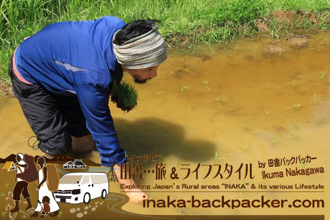 能登・穴水町岩車(あなみずまち いわぐるま) - 田植えから始まった一日