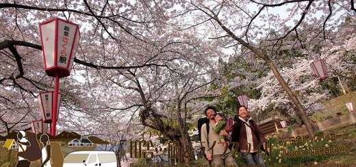 """能登・穴水町 能登鹿島「能登さくら駅」(石川県) - 晴れたらこんな感じの駅になる。桜の時期、クルマを""""動く拠点""""にしたバックパッカー奥能登旅も楽しい。ただ、駐車スペースがほとんどないため、気を付けたいところ。"""