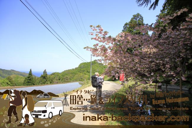 奥能登の「能登キリシマツツジ」「オープンガーデン」の池上家(珠洲市大谷)からの眺め。ここには八重桜も咲いていて里海が見える絶好の景色。