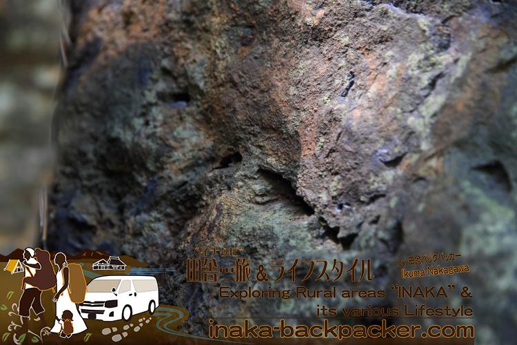珪化木(けいかぼく)の木目