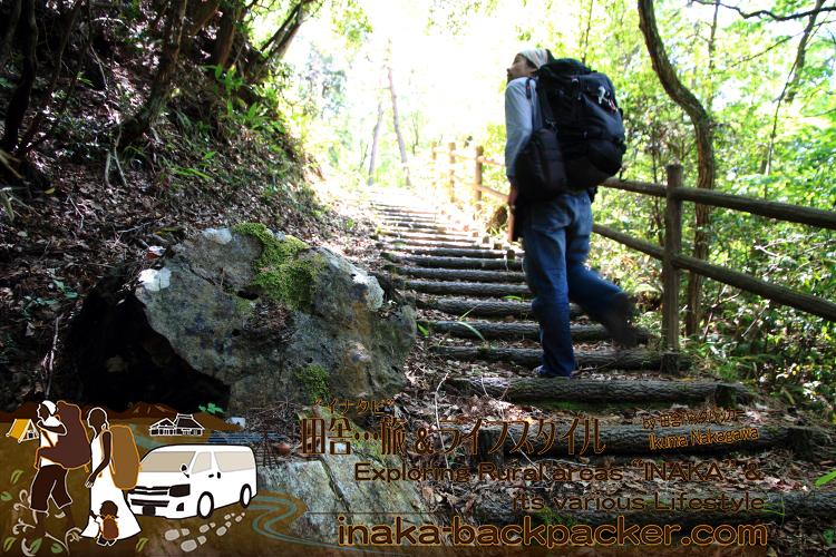 一番上の珪化木を見るには長い道のりの階段を登ることになる。