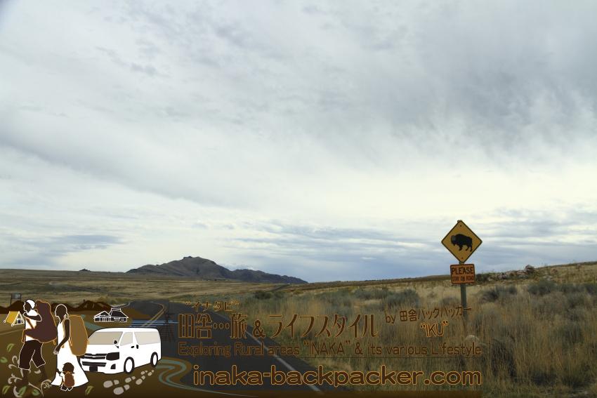 ユタ州グレートソルトレイク・アンテロープアイランド/島 - バイソン注意のサインが見えてきた。