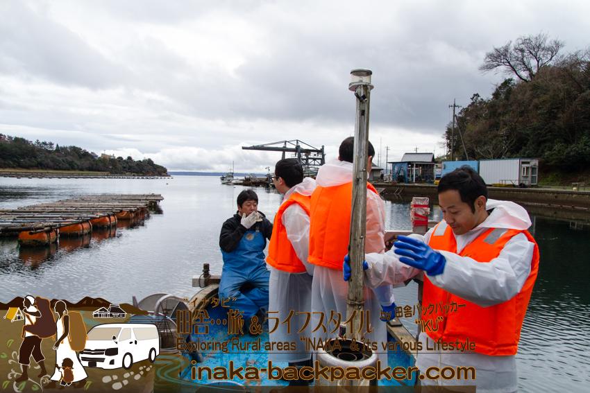 能登・穴水町岩車 - 河端さんの牡蠣棚へ船で出発。7人の大人数なので、二つのグループに分かる。1グループ約1時間の水揚げ体験作業。