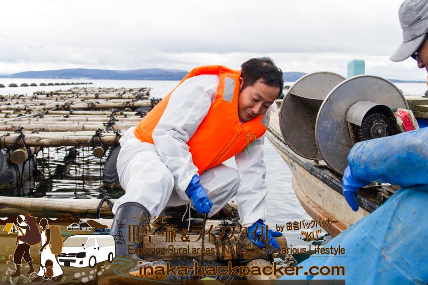 能登牡蠣 水揚げ 漁師体験