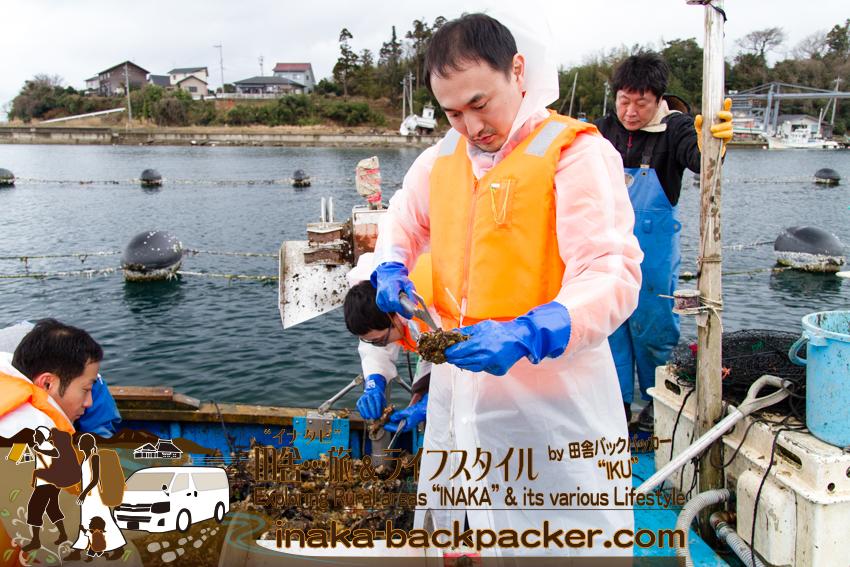 牡蠣漁師体験