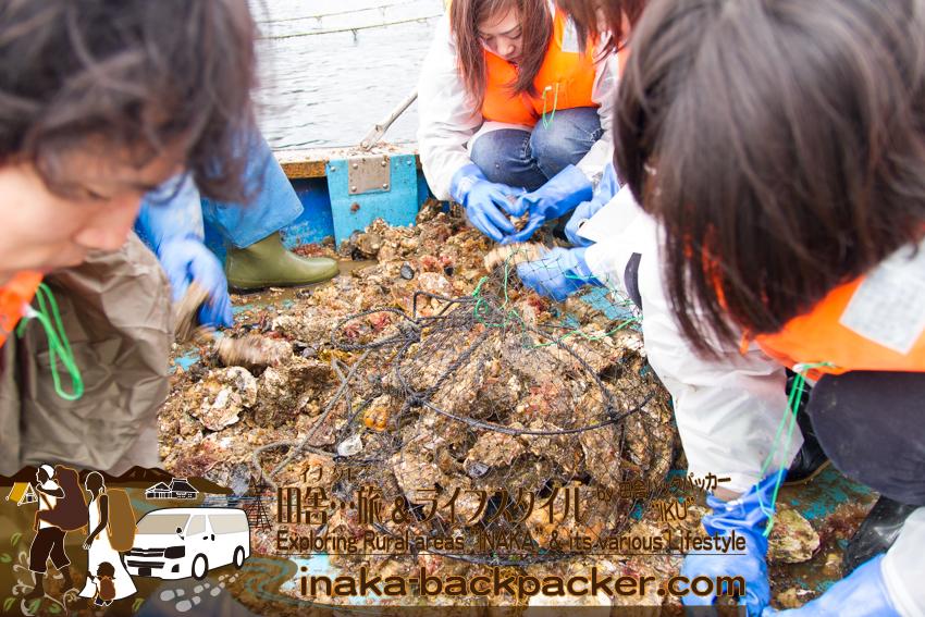 牡蠣漁師体験 能登牡蠣