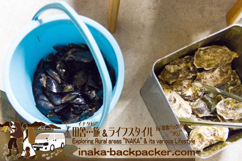 能登・穴水町岩車 - 水揚げしたばかりの一斗缶の牡蠣。一斗缶には、約70個から80個の牡蠣が入っている。その他、干物、ムール貝、おにぎりもあるので、十分な食材だ。