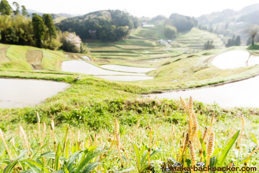 千葉県 天然村