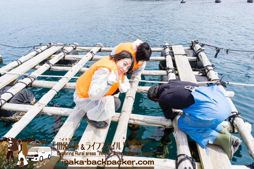 牡蠣の漁体験