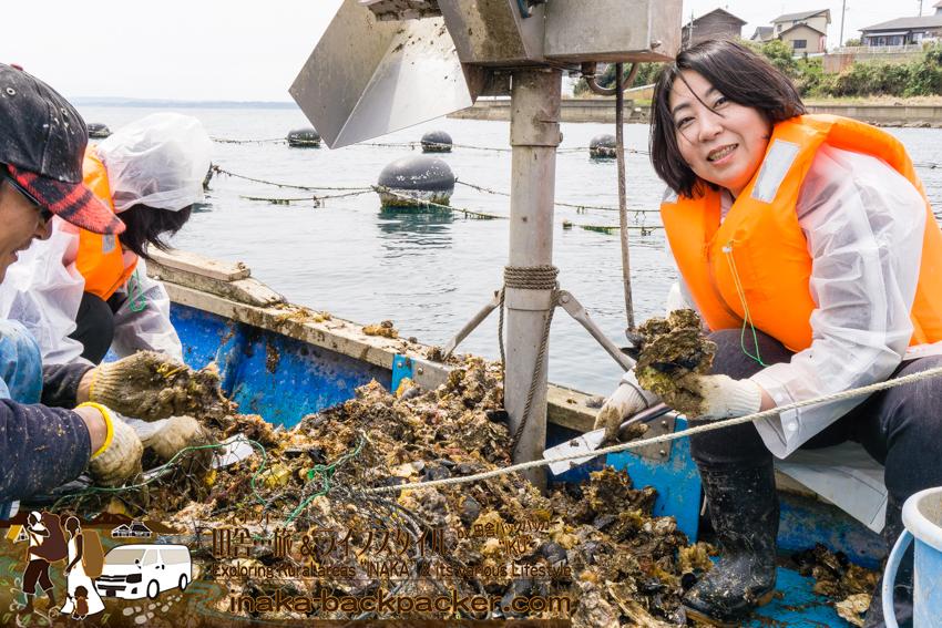 牡蠣の出荷作業を体験
