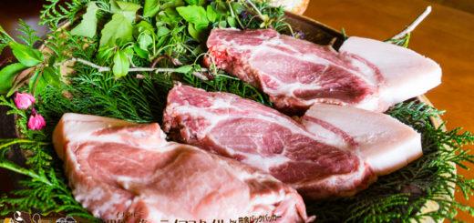 能登イベリコ豚を飼育する道坂一美さん宅で昼食