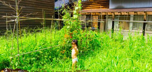 穴水町 田舎の保育園事情 畑で野菜を食べる子ども