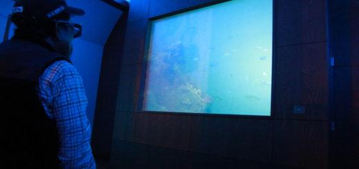 富岡城 跡 3D映像 テレビ 天草 海中