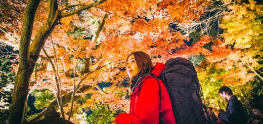 鎌倉 長谷寺 紅葉 旅人 バックパッカー