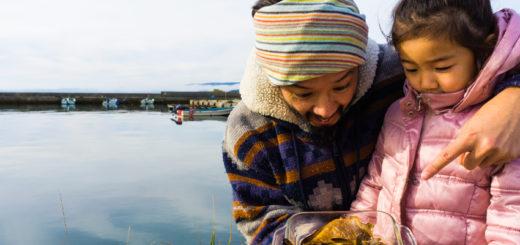 田舎 煮つけ 里海の幸 漁師町 メリット バックパッカー 家族