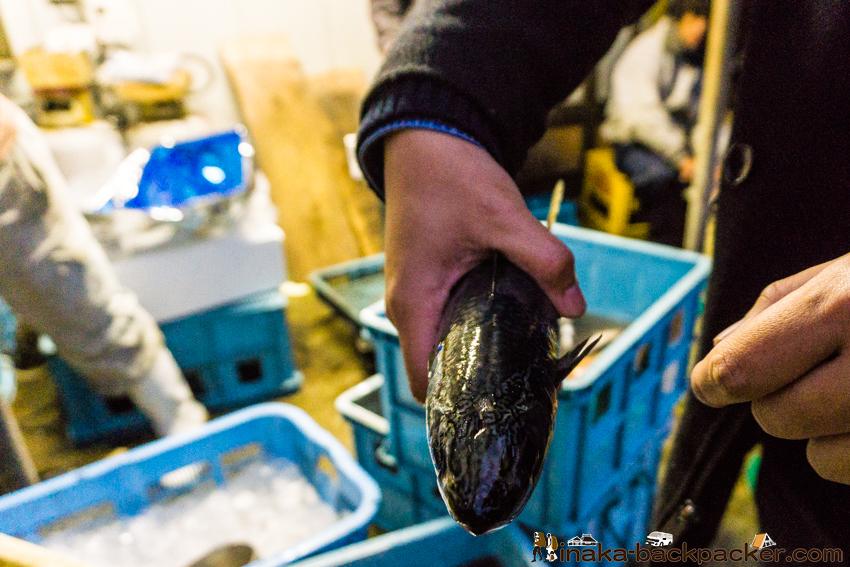魚 神経絞め 頭 穴 IKEJIME Fish how to in Japan