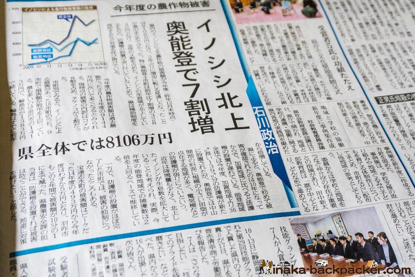 北國新聞 イノシシ 奥能登 急増