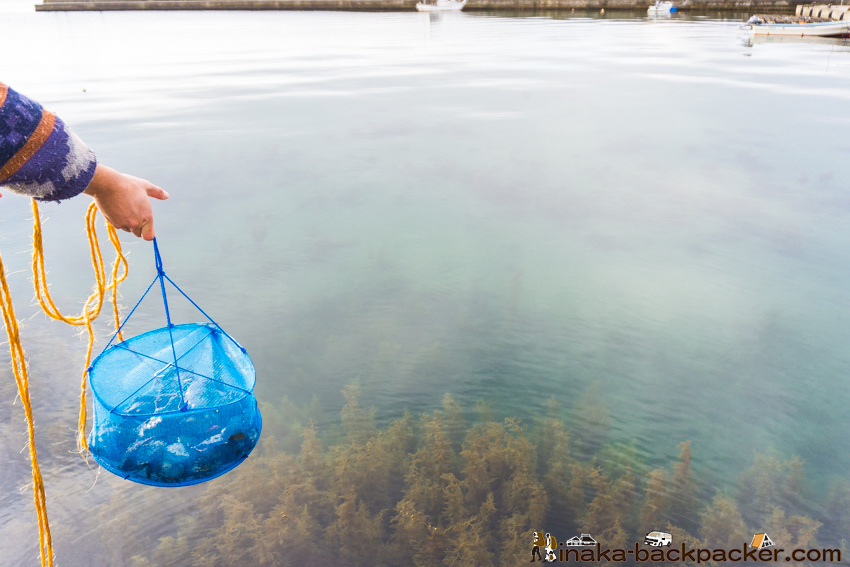 能登 里海 保存 貝 ナマコ