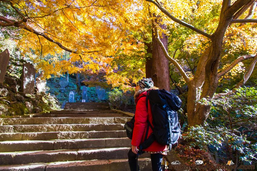 建長寺 天園ハイキングコース Hiking course in Kamakura